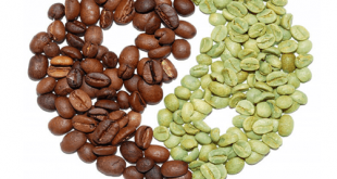 أضرار القهوة الخضراء للجسم