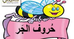 حروف الجر في اللغة العربية للصف الثاني