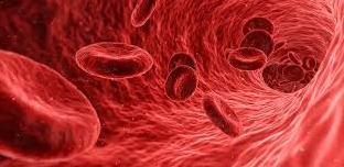خلايا الدم الحمراء