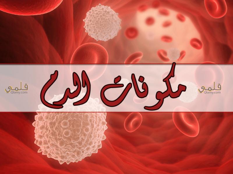 مكونات الدم ونسبها