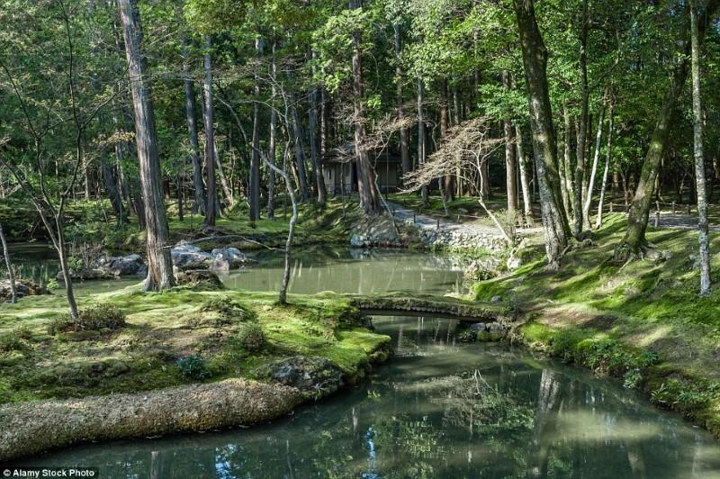 اجمل الحدائق في العالم- حديقة سيهو جي في اليابان