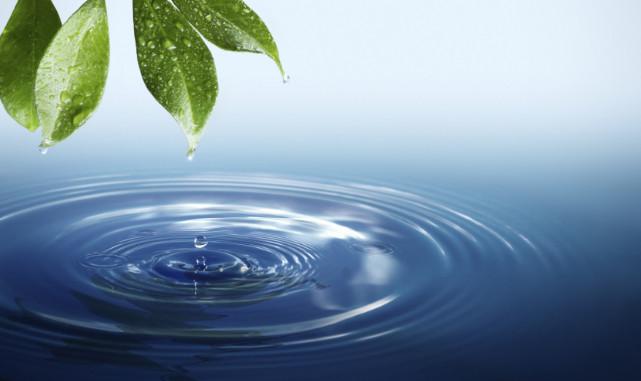 اسباب تلوث الماء