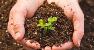 تأثير الإنسان على التربة