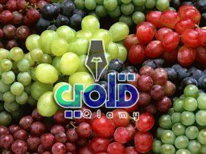 فوائد العنب للأطفال
