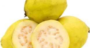 فوائد الجوافة للتخسيس