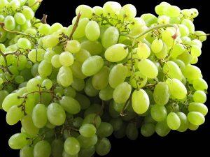 اضرار العنب