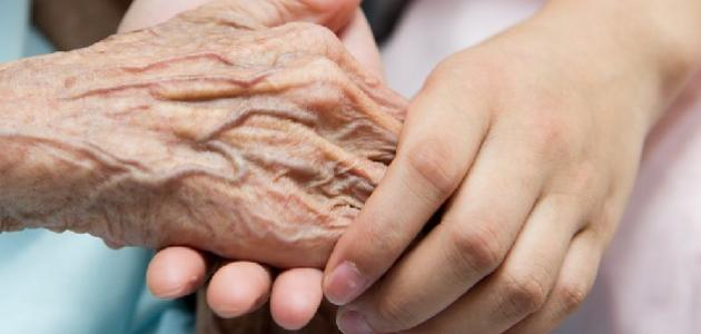 قصص عن احترام المسنين