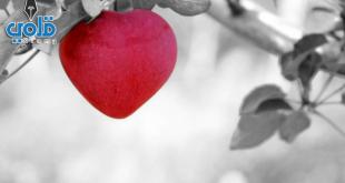 حديث الرسول عن الحب