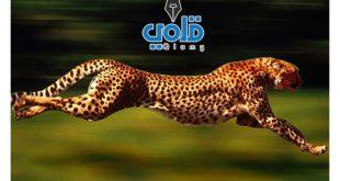 أسرع حيوان في العالم