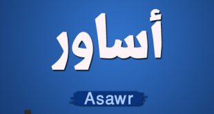 معنى اسم أساور وصفات حاملة إسم أساور