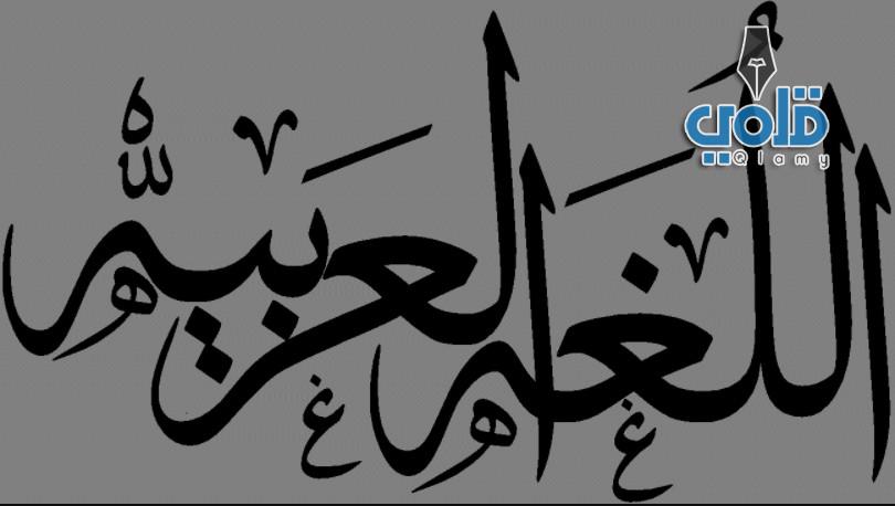 اللغة العربية كنز وعطاء قلمي