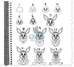 طريقة رسم أرنب