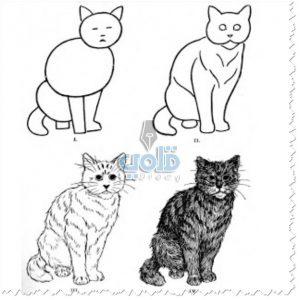 طريقة رسم قطة