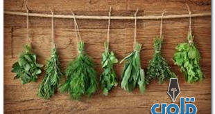 علاج الأرق بالأعشاب