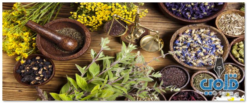 علاج الدوار بالاعشاب