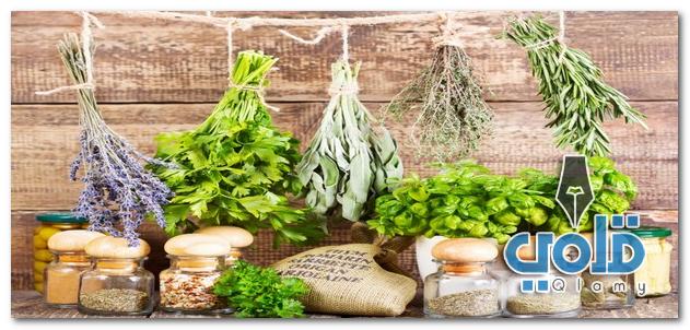 علاج حصي المرارة بالأعشاب