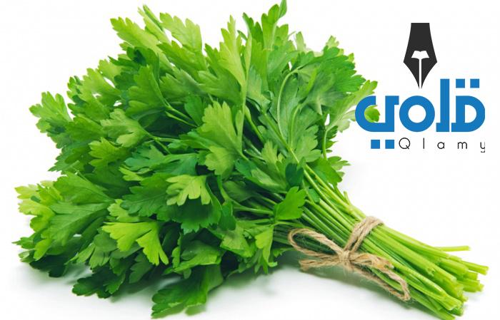 علاج قرحة المعدة بالاعشاب