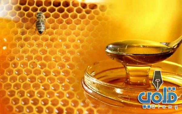 فوائد شمع العسل للجنس