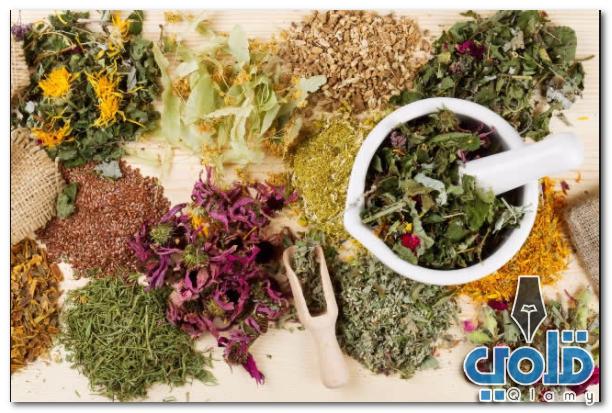 علاج الترامادول بالاعشاب الطبيعية