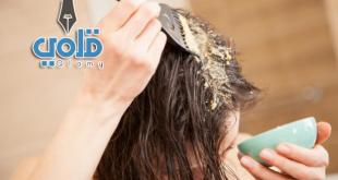 البابونج لتفتيح الشعر