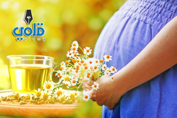 شرب البابونج للحامل في الاشهر الاولى