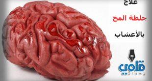 علاج جلطة المخ بالاعشاب - قلمي