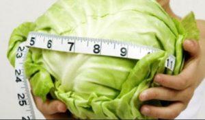 فوائد الملفوف في تخفيف الوزن