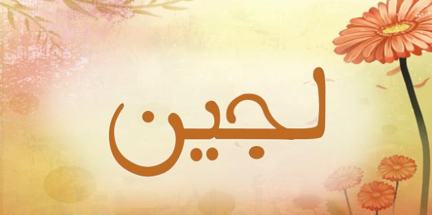 معنى اسم لوجى فى الاسلام