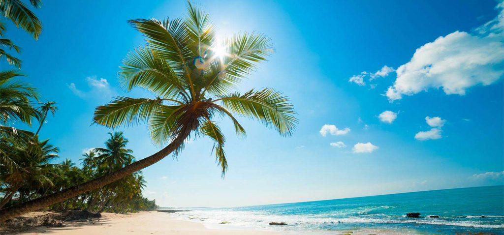 السياحة في سريلانكا المسافرون العرب