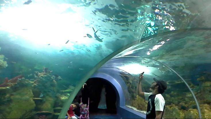 فقيه اكواريوم - السياحة في السعودية بالصور